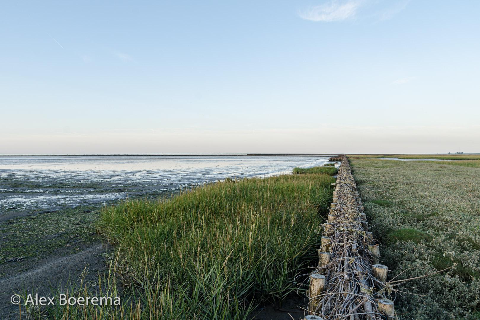Nieuwe rijsdam september 2019